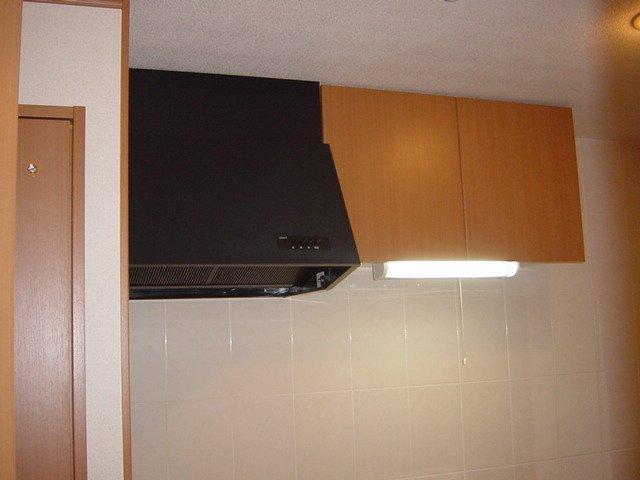 ブルーサンズ セントラル 203号室のキッチン