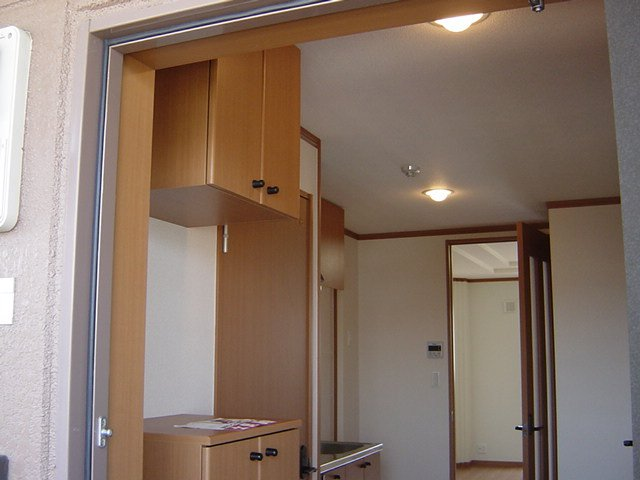 ブルーサンズ セントラル 203号室の玄関