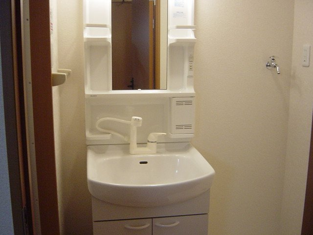 ブルーサンズ セントラル 203号室の洗面所