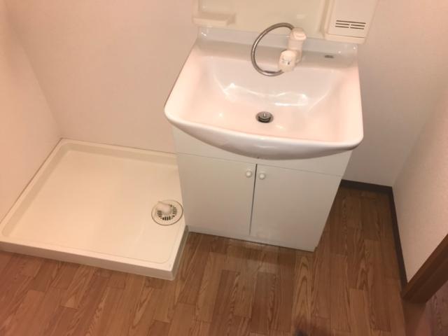 グリーンパレスⅡ 203号室の洗面所