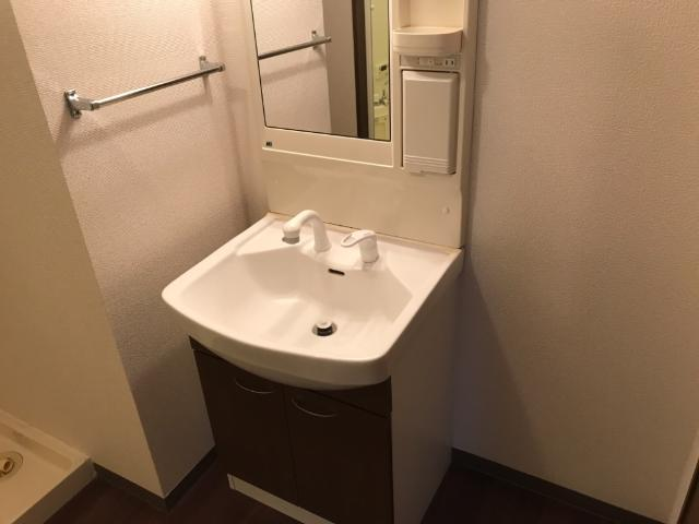 ウエストヴィラージュ(West Village) 205号室の洗面所