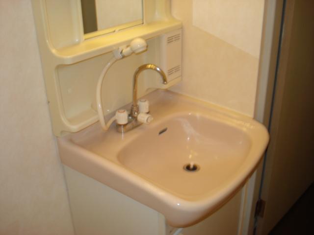 グランチェスタ 00102号室の洗面所