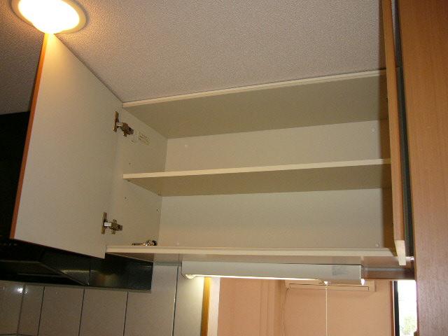 グレイスヴィラ 201号室のキッチン
