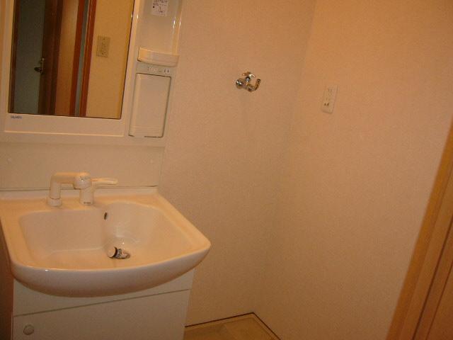 グレイスヴィラ 201号室の洗面所