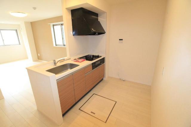 メゾンドU参番館 205号室のキッチン