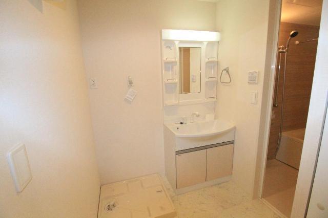 メゾンドU参番館 205号室の洗面所