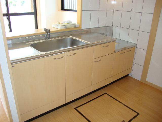 ガーデン鏡池 102号室のキッチン