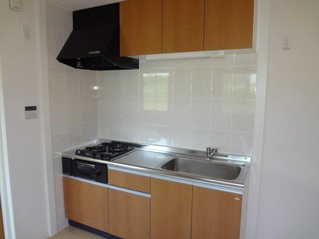 ラ サルーテ デュオ 101号室のキッチン