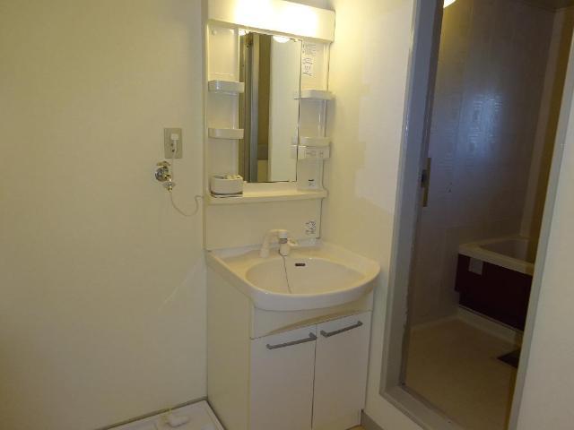 ロイヤルコープM 00301号室の洗面所