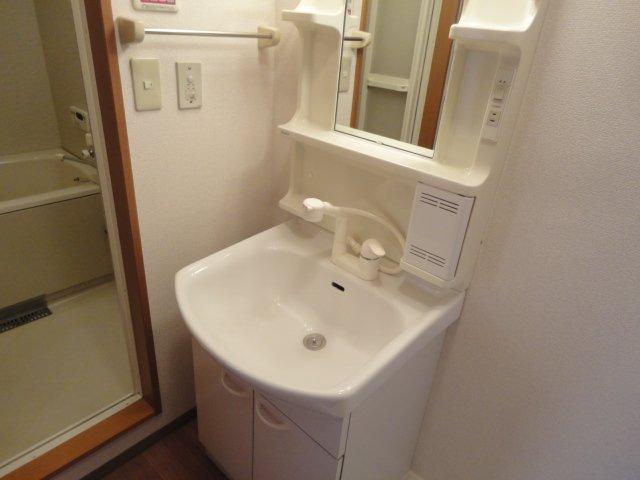 ディアコーポSUZUKI 201号室の洗面所