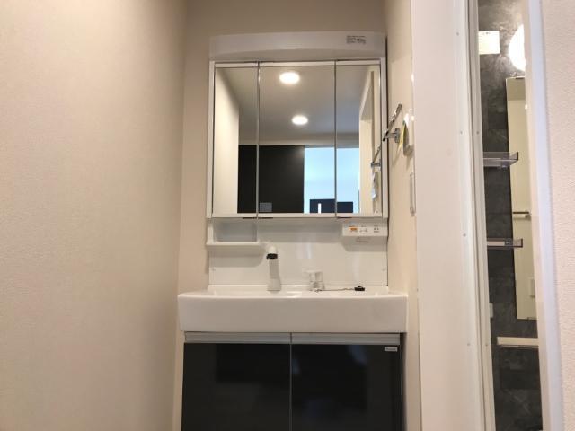 コリーナ 102号室の洗面所