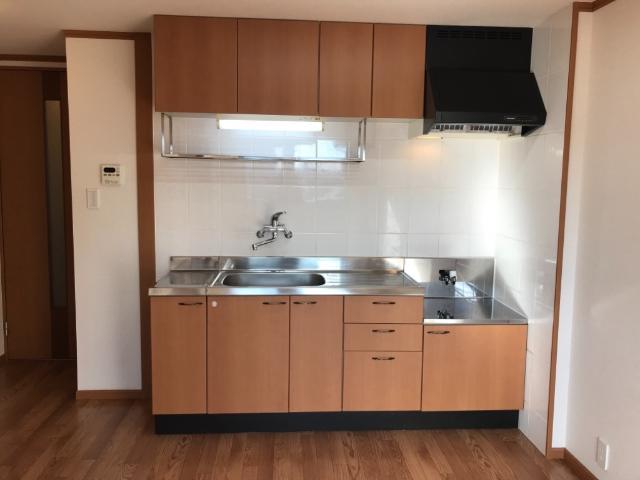 サン・ビレッジM 202号室のキッチン