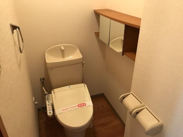 サン・ビレッジM 202号室のトイレ