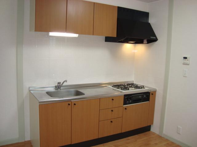 ヴィル・グラシュー・アン 101号室のキッチン