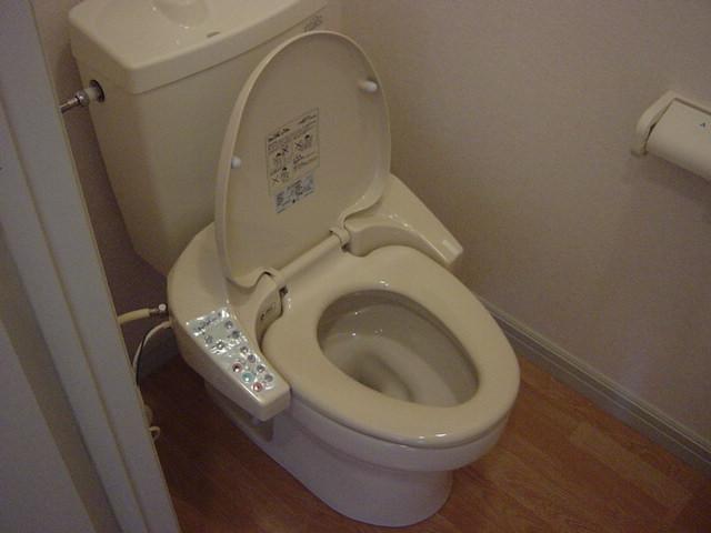 ヴィル・グラシュー・アン 101号室のトイレ