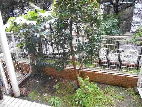 ライオンズマンション北千住第5 104号室の庭