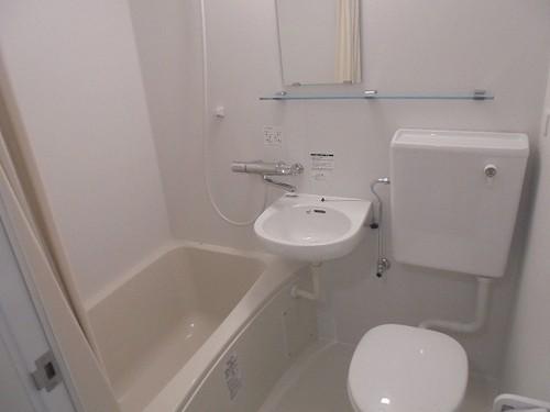 ライオンズプラザ宇栄原 103号室の風呂