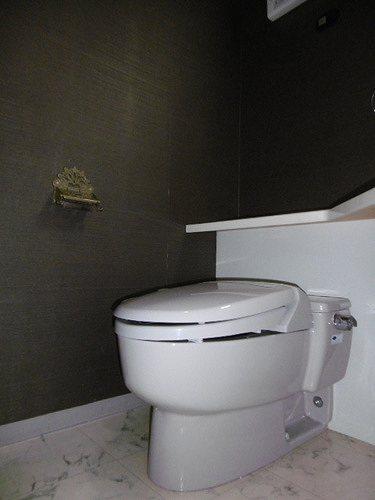 エクセルシオール日本橋 304号室のその他