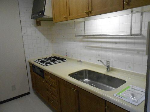 ネオシティ岡崎参番館 318号室のキッチン
