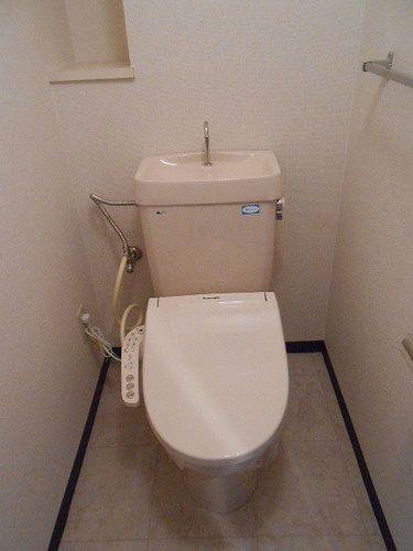 ネオシティ岡崎参番館 318号室のトイレ