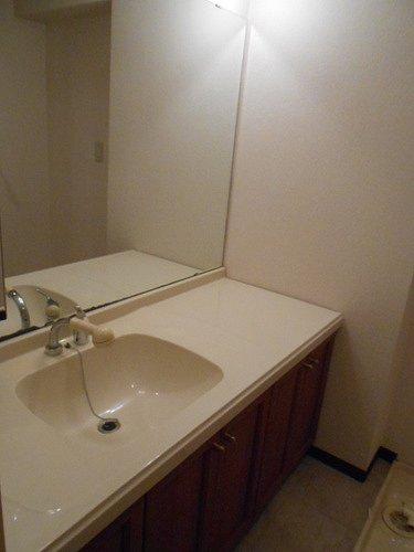 ネオシティ岡崎参番館 318号室の洗面所