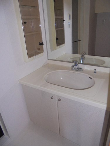 ライオンズステージ竹の塚 403号室の洗面所