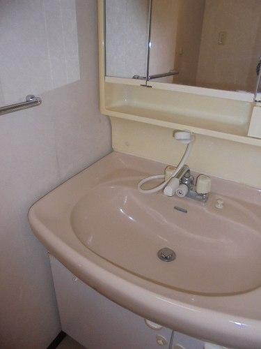 レクセル五反野 104号室の洗面所