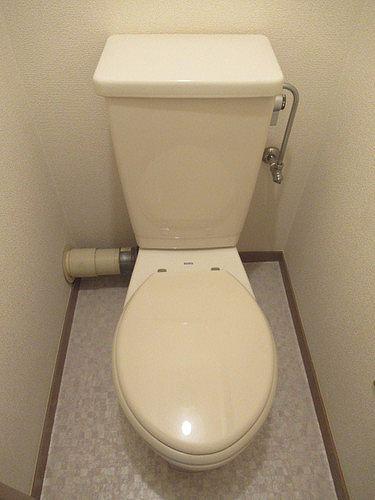 ライオンズマンション五反野 206号室のトイレ