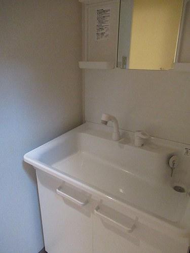 ライオンズマンション五反野 206号室の洗面所