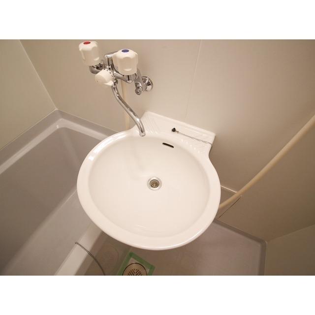 アムール YABE 202号室の洗面所