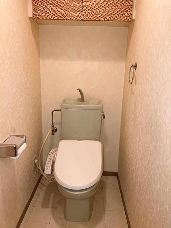 ラフィネグランヒルズ町田南 304 304号室のトイレ