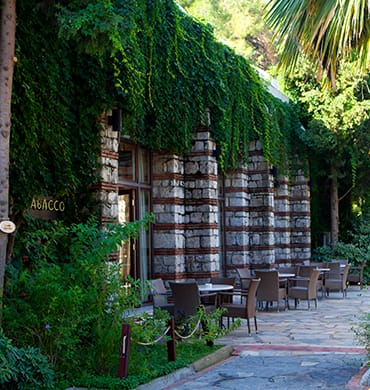 A quiet corner to sit under lush greenery, drink and book in hand