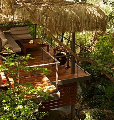 Entspannen Sie inmitten grüner Pinienbäume, Bächen und duftenden Blumen