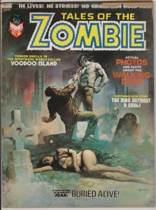 TALES OF THE ZOMBIE #2 BORIS VALLEJO COVER BROTHER VOODOO 1973 MARVEL COMICS