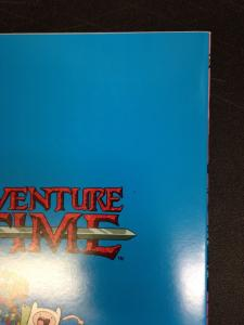 Adventure Time 21 NM Cover C Virgin Variant
