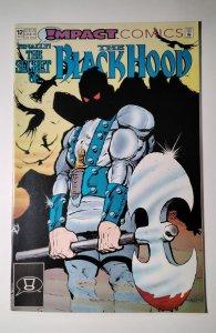 The Black Hood #12 (1992) Impact Comic Book J756