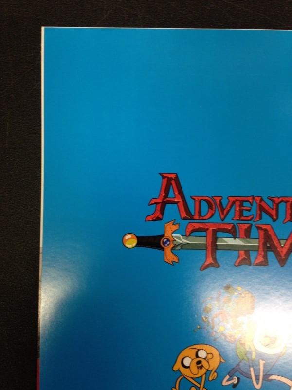 Adventure Time 21 NM Cover C Virgin Variant