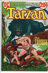 TARZAN #218 1973-DC-EDGAR RICE BURROUGHS-JOE KUBERT JUNGLE ART-fn/vf
