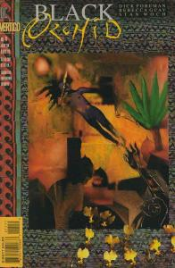 Black Orchid #11 FN; DC/Vertigo | save on shipping - details inside