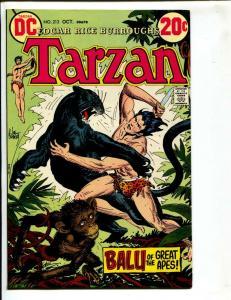 Tarzan-#213-1972-DC-BRONZE-AGE-Joe Kubert-NM-