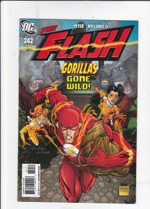 Flash #242