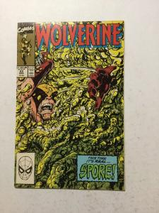 Wolverine 22 NM Near Mint
