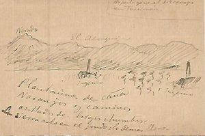 DIBUJO 3660: Dibujo boceto en lapiz. Plantaciones de caña