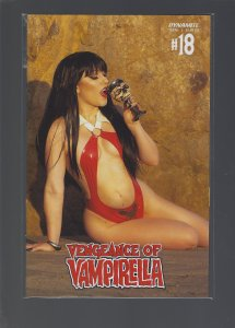 Vengeance of Vampirella #18 Cover D