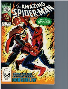 The Amazing Spider-Man #250 (1984)