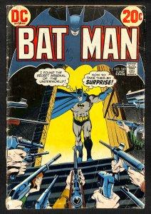 Batman #249 (1973)