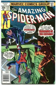 Amazing Spider-Man #175 1977-Punisher - Hitman F/VF