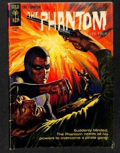 The Phantom #11 (1965)