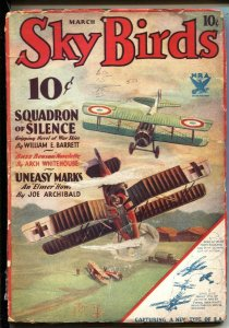 SKY BIRDS - MARCH 1934 - BUZZ BENSON HERO PULP - FRANK TINSLEY BIPLANE BATTLE...
