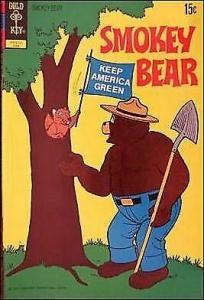 Smokey Bear #10 FN; Gold Key   save on shipping - details inside
